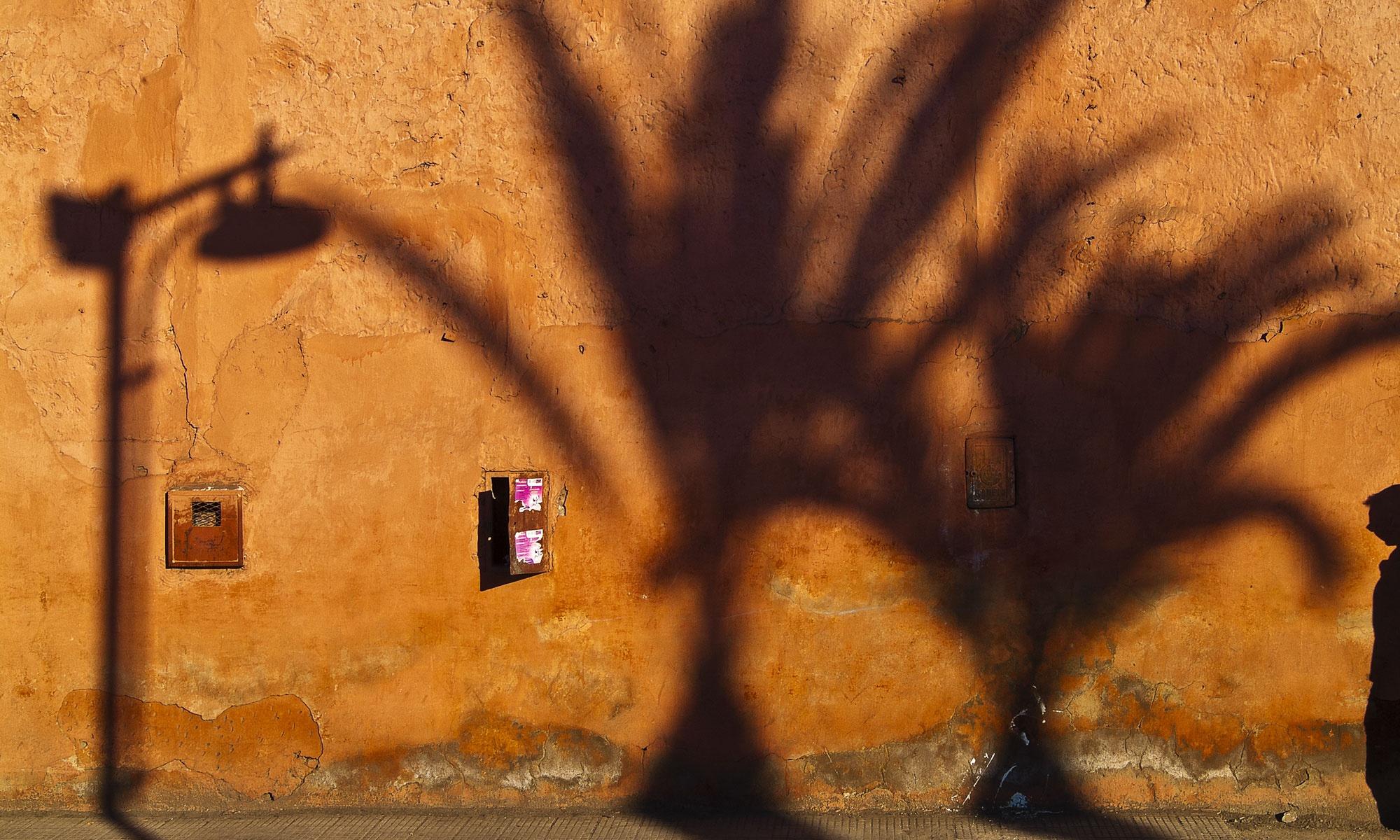 Palmenschatten Strasse Marrakesch